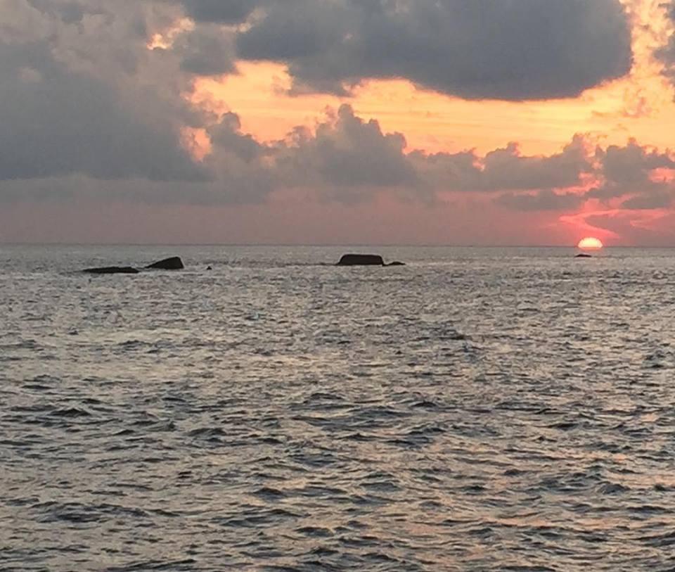 Shark Fin Reef Similan Islands